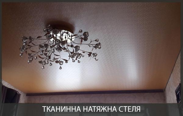 Тканинна натяжна стеля для зала фото