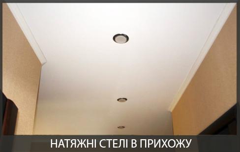 Натяжні стелі в прихожій фото